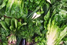 صورة الخضروات المسموحة في الكيتو : أهم 19 نوع يجب الاهتمام بتناولهم