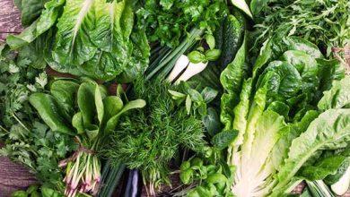صورة الخضروات المسموحة في الكيتو : أهم 20 نوع يجب الاهتمام بتناولهم