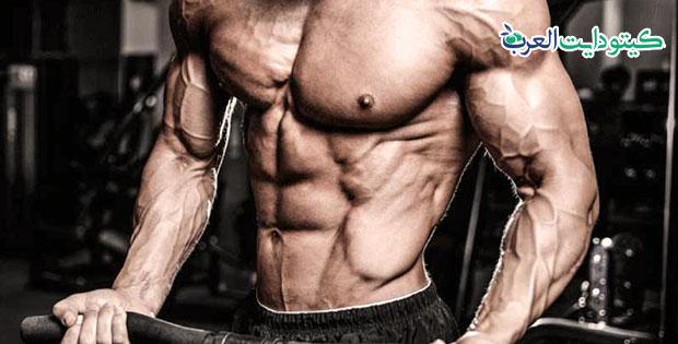 تمارين الكيتو: كيف تبني عضلات ضخمة بدون كربوهيدرات؟-03