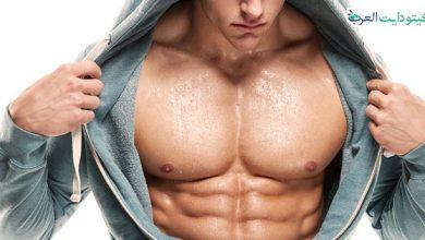 صورة الكيتو دايت لكمال الاجسام: دليلك الشامل لبناء عضلات قوية