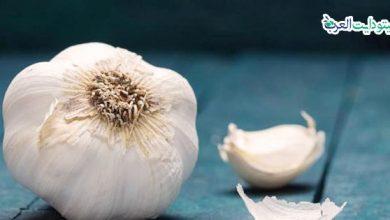 صورة هل الثوم مسموح في الكيتو: معلومات مهمة جدًا من أجل حميتك
