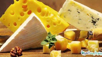 صورة هل الجبن مسموح في الكيتو: أفضل 3 أنواع صحية