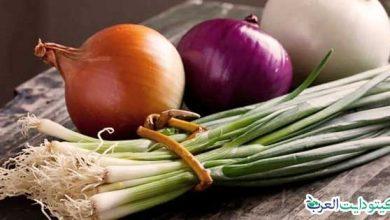 صورة هل البصل مسموح في الكيتو: أفضل نوع لحميتك