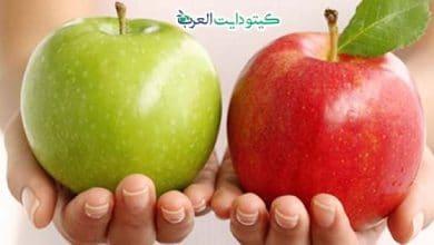 صورة هل التفاح مسموح في الكيتو؟.. اعرف المنتج الوحيد المسموح به