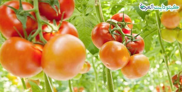 هل الطماطم مسموح في الكيتو